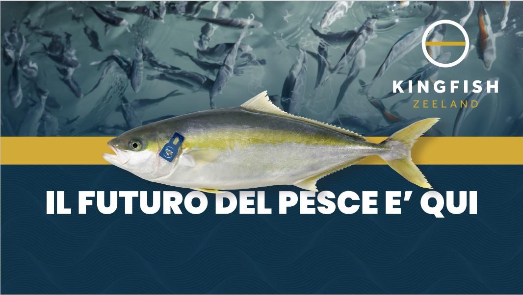Allevamenti ittici sostenibili: il modello adottato da Kingfish Zeeland